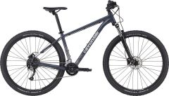 Cannondale Trail 6 L Gri 2021