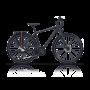Bicicleta CROSS Quest man- 28'' trekking