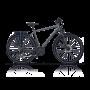 Bicicleta CROSS Avalon - 28'' trekking